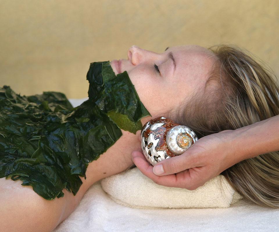 Fabbrimarine Thalasso - обертывание цельными живыми водорослями