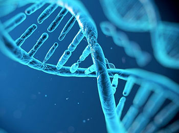 geneticheskiy-pasport-011